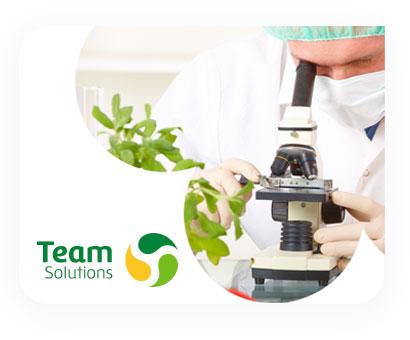Team Solutions | Negocio de Alianza Team