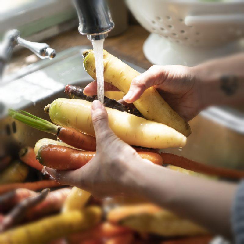 Inocuidad de los alimentos: la importancia de asegurar su consumo